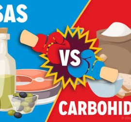 grasas vs carbs